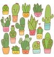 set cactus plant in kaiwaii vector image