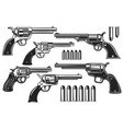 set revolvers and cartridges design element vector image vector image