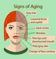 sing of aging face with two types of skin vector image vector image