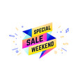 special sale weekend 3d sale banner with text vector image