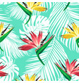 strelitzia palm pattern bir vector image vector image