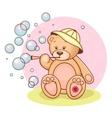teddy babubbles vector image