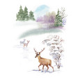 watercolor winter landscape with deers vector image vector image