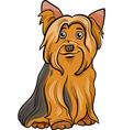 yorkshire terrier dog cartoon vector image vector image