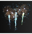 Festive patterned firework explosion in various vector image