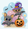 greeting halloween card with two bats vector image vector image