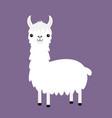 llama alpaca cute cartoon funny kawaii baby vector image vector image