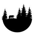 logo bear vector image vector image