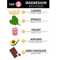 magnesium rich products vector image