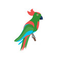 parrot vector image