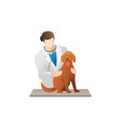veterinarian with a dog vector image