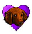 cute little dog head in heart vector image