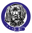dog spaniel in a collar logo vector image