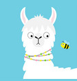 llama alpaca face looking at bee childish baby vector image