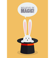 Magic top hat with rabbit vector image vector image