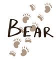 paw print of a bear