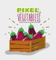 pixel vegetables cartoons vector image vector image