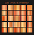 red gold gradient collection for fashion design vector image