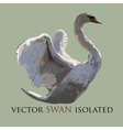 Swan isolated object Watercolor vector image