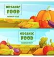 Organic Food 2 Retro Banners Set vector image