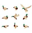 bird icon collection vector image vector image