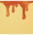 Drips Abstract Background Caramel Honey vector image