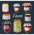 Fruit Jam set vector image