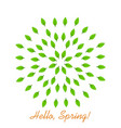 hello spring mandala of leaves vector image