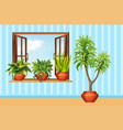 different plants in claypot in the room vector image vector image