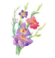 flowers watercolor spring and summer vector image