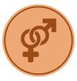 Heterosexual symbol bronze coin vector image