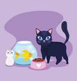 pet shop black cat fish kitten bowl food animal vector image vector image