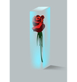Rose and crystal vector image vector image