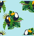 tropical pattern with toucan birds vector image vector image