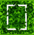 background green leaf with white frame vector image