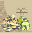 organic food advertising with vegetables vector image