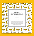 a square postcard with seamless banana patterns vector image vector image