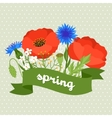 Floral background with pretty spring flowers