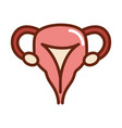 human body female reproductive system anatomy vector image vector image