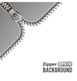 Silver zipper background vector image