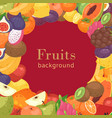 summer tropical fruit cartoon vector image
