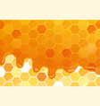 sweet honey glossy background with copy space for vector image vector image