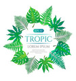tropical leaves round frame with place for text vector image vector image