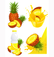Ananas products vector image vector image