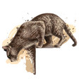 cat jumps down wall sticker vector image vector image