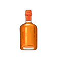 half of whiskey scotch glass bottle icon vector image vector image