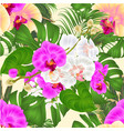 seamless texture tropical flowers vector image