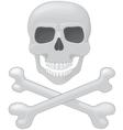 Skull with cross bone vector image