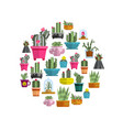 cartoon cactuses and succulents in circle on white vector image vector image