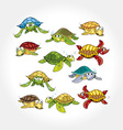 Cartoon turtles collection vector | Price: 1 Credit (USD $1)